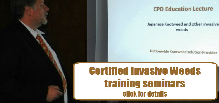 PLR Ltd - We offer CPD training about invasive weeds including Japanese Knotweed